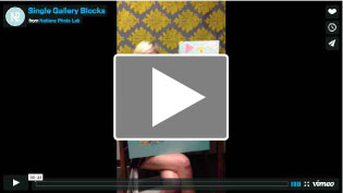 Single Gallery Block Video