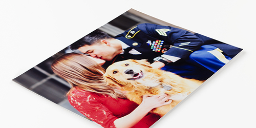 Couple kissing while dog smiles and sits on a single-weight matboard mount