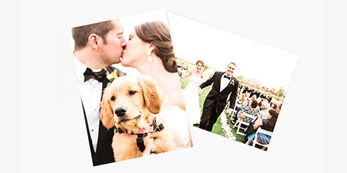 Newlyweds kissing while holding their golden retriever on a Custom Wedding Photo Print
