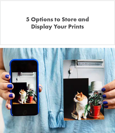 Girl holding two pictures of a cat and a flower pot, one on a photo print the other on a cellphone.
