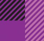 PURPLE BORDER