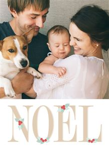 Family of three with their pet dog on a Custom Holiday Card