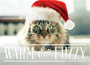 Cat wearing a Santa hat on a Custom Christmas Card