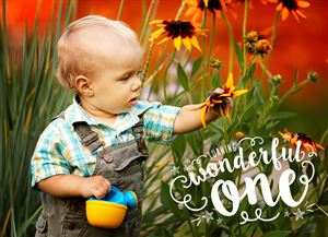 Little boy playing with flowers in a field on a Custom Wonderful One Birthday Card